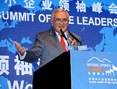 Mr. Jean-Pierre Raffarin